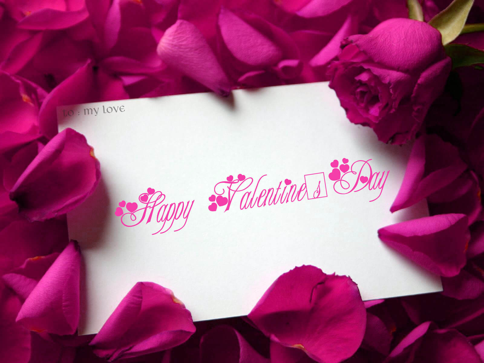 Happy Valentines Day Roses Flowers Image Wallpaper
