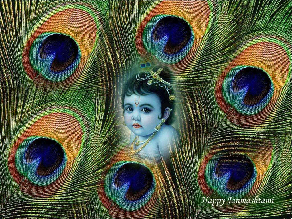 happy janmashtami quotes sms shayari