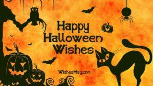 Happy Halloween Wishes Cat