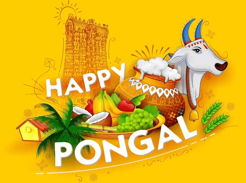Happy Pongal Wishes Cow