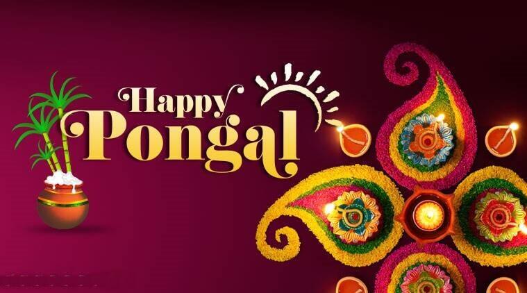 Happy Pongal Wishes Rangoli
