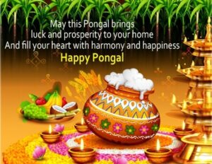 Happy Pongal Wishes South india