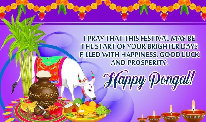 Happy Pongal Wishes Status