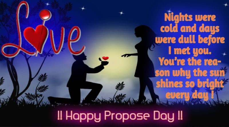 Happy Propose Day Night