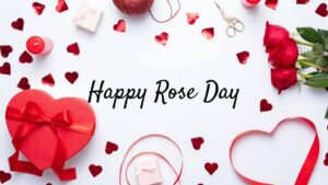 Happy Rose Day Gifts
