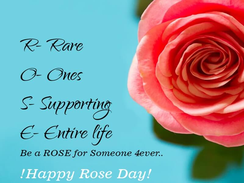 Happy Rose Day Rose
