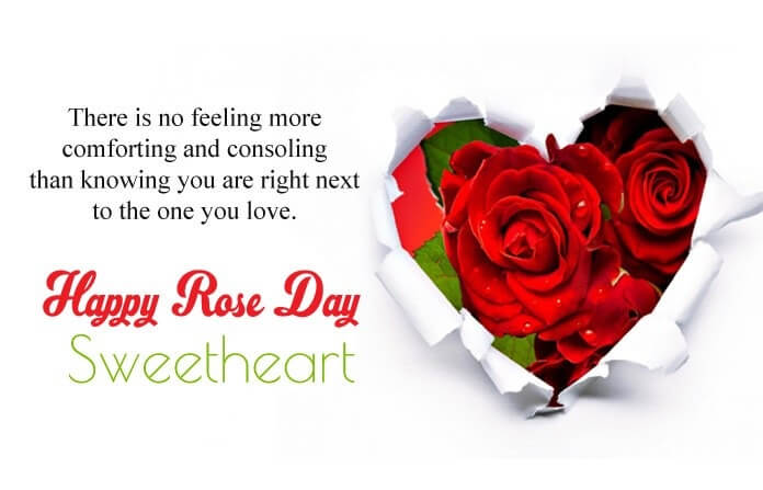 Happy Rose Day Status